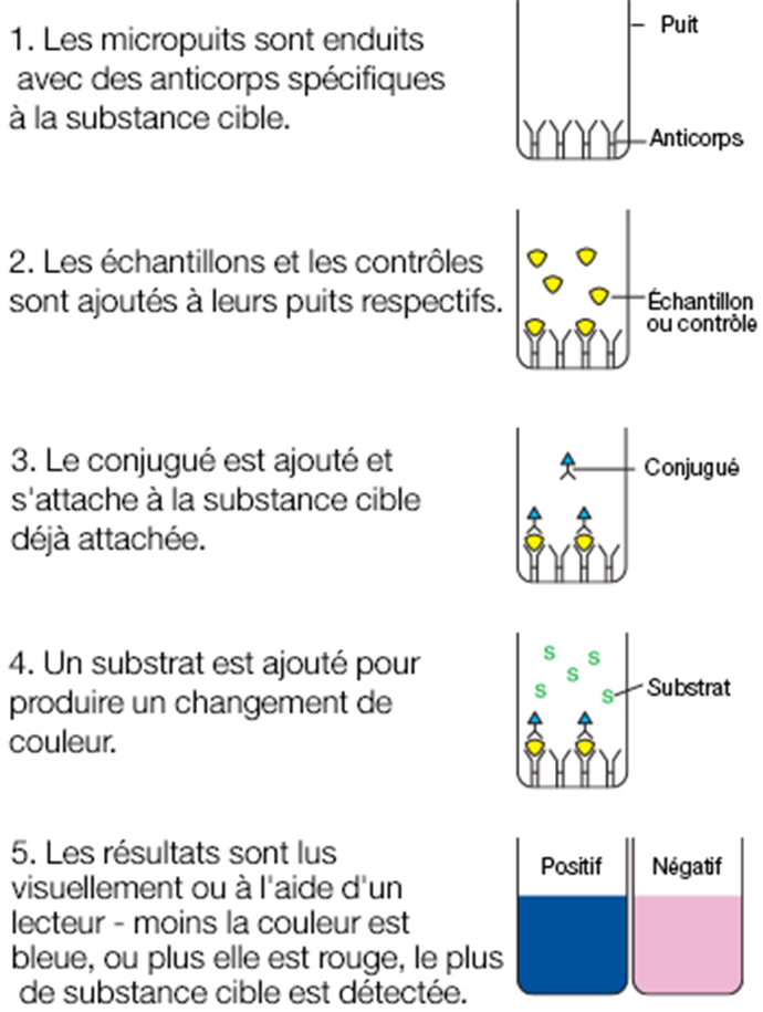 Alert_diagram_fr.png